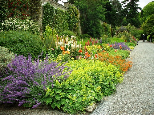 ボドナントガーデン ボーダー花壇
