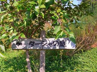 2009.10.29岐阜花フェスタ記念公園 023